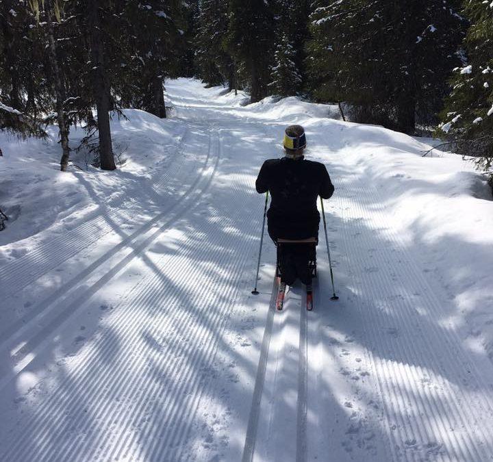 Testa på skidåkning